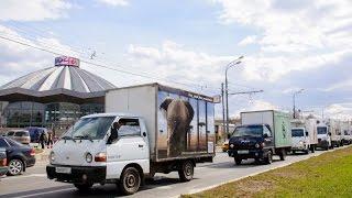 Автореклама в России за цирк без животных - за цирк без жестокости!(Полгода в Москве работает социальная реклама на грузовиках «За цирк без животных!» Старт кампании