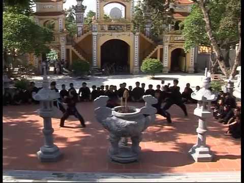 Vo Phai Tong Hop