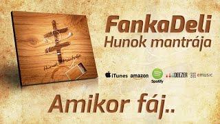 FankaDeli - Amikor fáj... (2011)