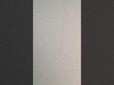 Anthony Martin Home Decor - Wallpics – part 05