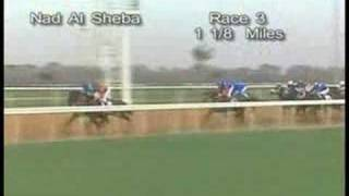 Discreet Cat - UAE Derby 2006