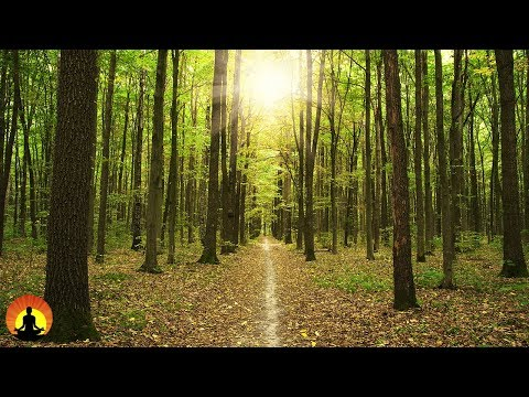 Studying Music for Concentration, Music for Stress Relief, Brain Power, Meditation Music, ☯3237