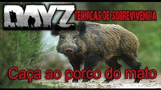 DayZ Técnicas de sobrevivencia - Caça ao porco do mato