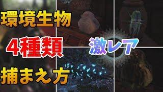 【MHW】激レア!4種類の環境生物の捕まえ方!【解説】