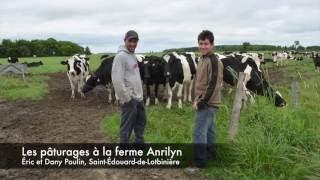 Les pâturages à la ferme Anrilyn