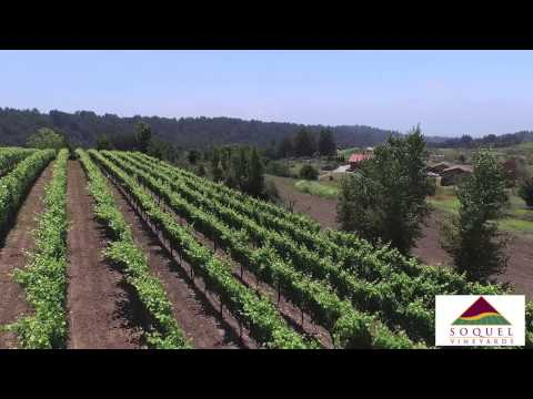 video:Soquel Vineyards