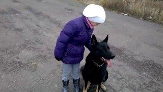 Девочка и собака телохранитель