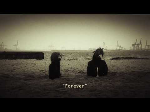 "Steven Wilson ""Harmony Korine"" HD"