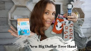 Big Dollar Tree haul September 21 2019| New finds with updates