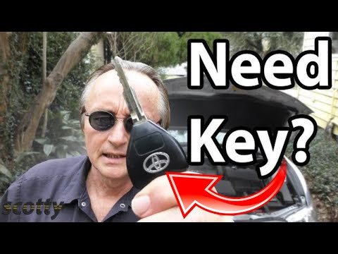 Need a New Car Key? Save Big by Following This Tip | Scotty