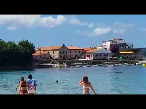 Dos arroaces hacen las delicias de los bañistas en Aguete