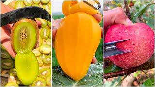 😍Farm Fresh Ninja Frขit   Tik Tok China   (Oddly Satisfying Fruit Ninja) #5