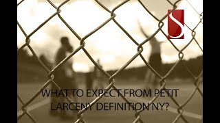 What to Expect From Petit Larceny Definition NY?