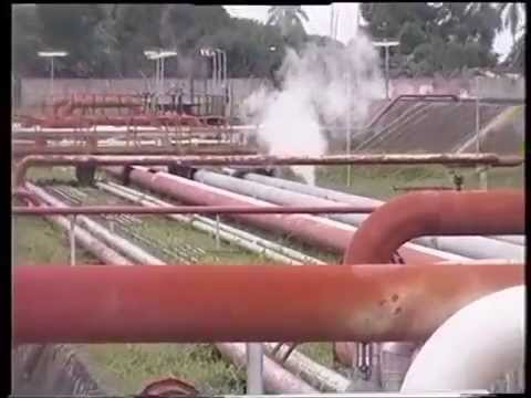 NLNG Advocates The Use of Liquefied Petroleum  Gas (LPG) For Domestic Cooking.
