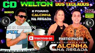 @WELTON DOS TECLADOS OFICIALLIVE 91 participação forró Calcinha na Regada bandas de forró ao vivo