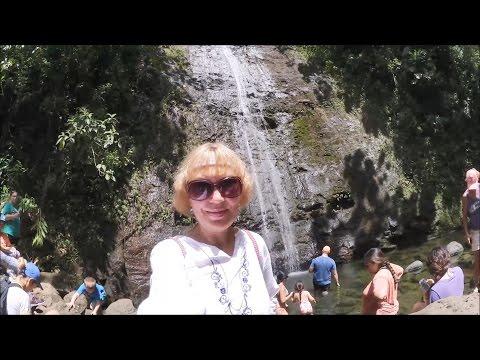 #914 США Гавайи Сквозь джунгли Водопад Маноа Manoa Falls Trail