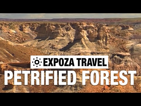 Petrified Forest (United States) Vacation Travel Video Guide