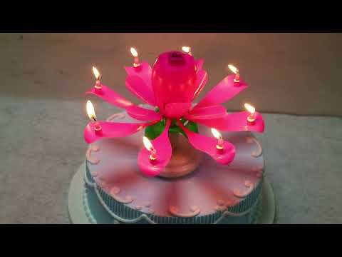 Wholesale multi color rose round based rotating music firework candle for happy birthday party