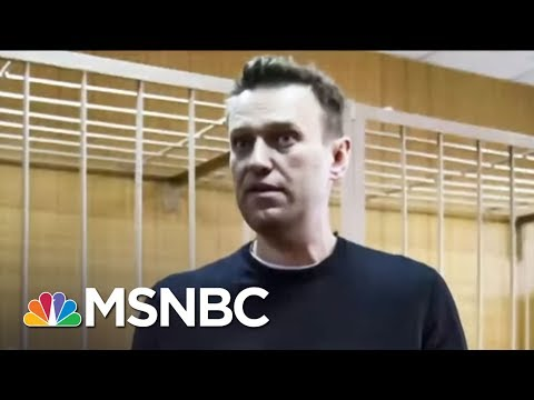 Alarming Pattern Of Russian Political Deaths | On Assignment with Richard Engel | MSNBC