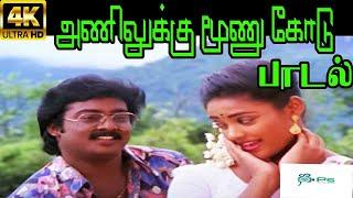 Anilukku Moonu Kodu ||அணிலுக்கு மூணு கோடு ||S.P.B,S.Janaki || Love Duet H D Song