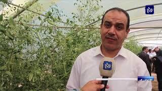 وزير الزراعة يفتتح وحدة الزراعة العضوية في مشتل الفيصل بجرش - (16-7-2019)