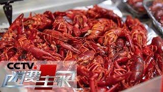 《消费主张》 20190531 小龙虾降价,吃货福利来了吗?| CCTV财经