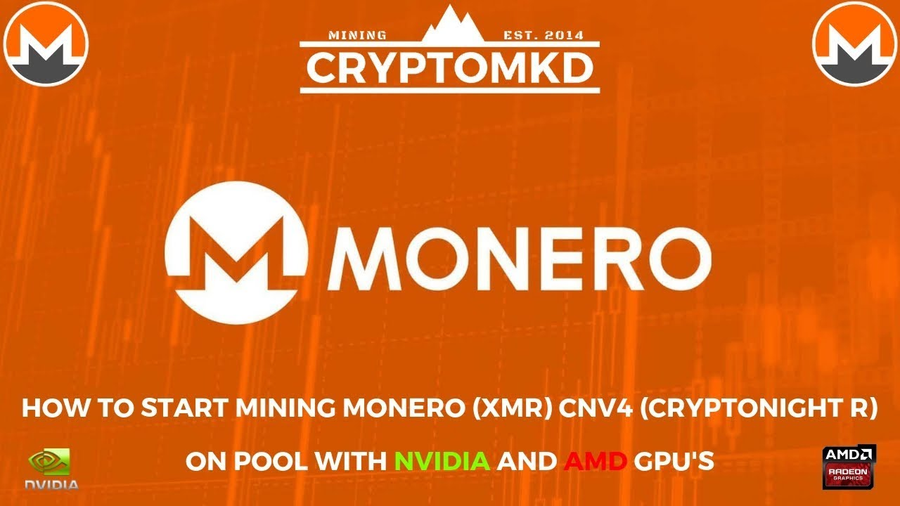 How to start mining Monero (XMR) CNv4 Cryptonight R on pool with AMD and  NVIDIA GPU's