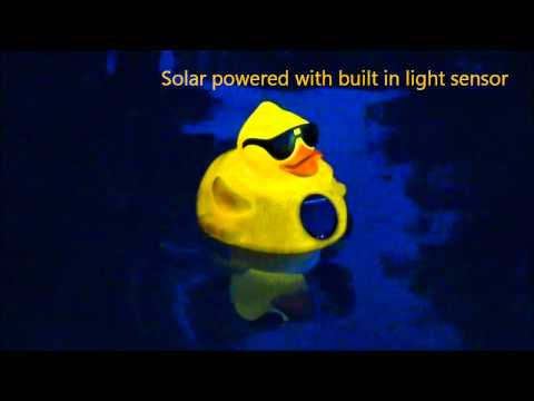 Solar Light up Duck Youtube Movie