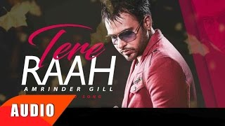 Tere Raah (Full Audio Song)   Amrinder Gill   Punjabi Song Collection   Speed Records