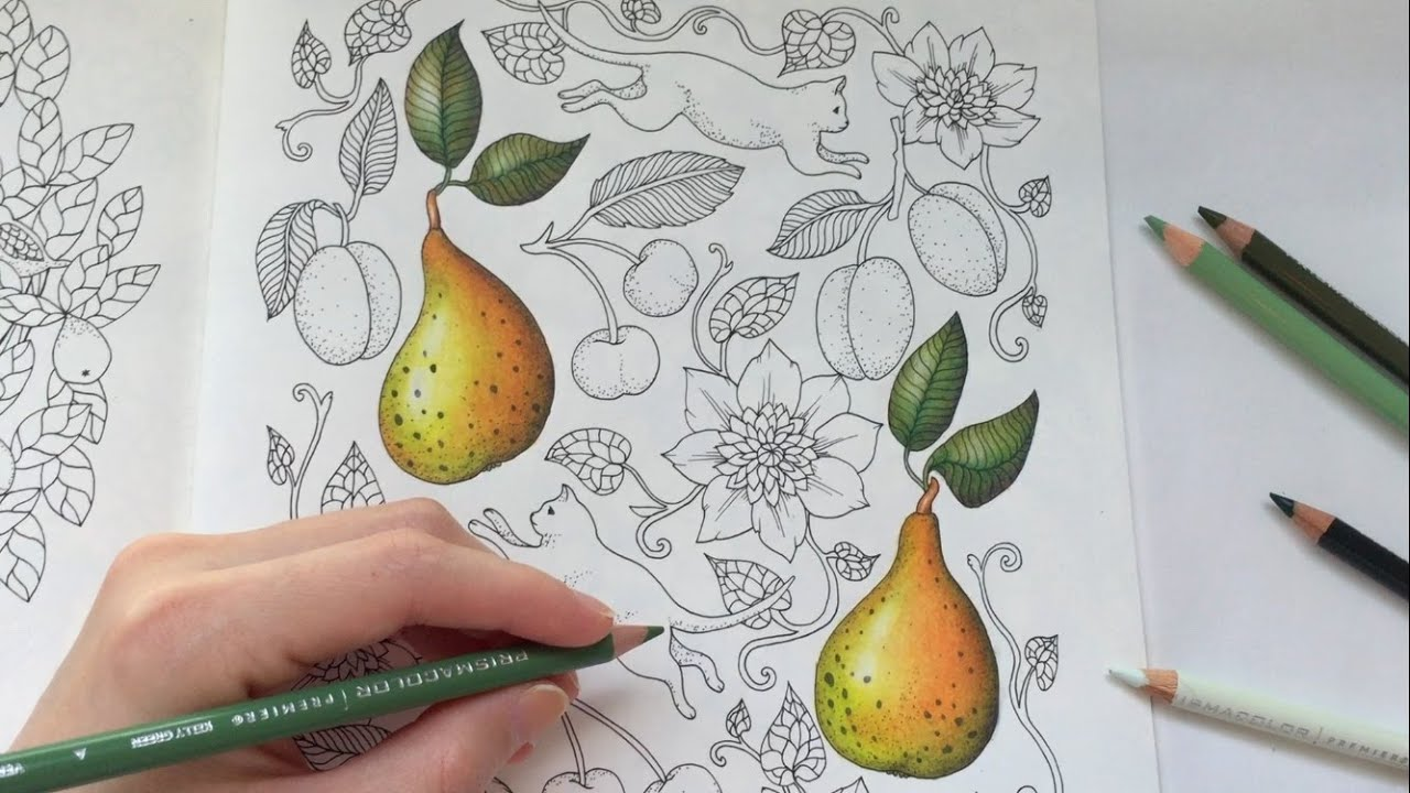 PEAR DRAWING / COLORING WITH COLORED PENCILS