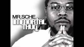 Mr.Sche - G