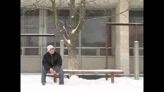 Phim | Sự tích cây quất phỏng theo sự tích cây khế | Su tich cay quat phong theo su tich cay khe