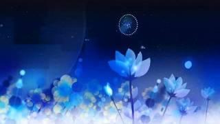 System 7 - Positive Noise MV by Koji Morimoto