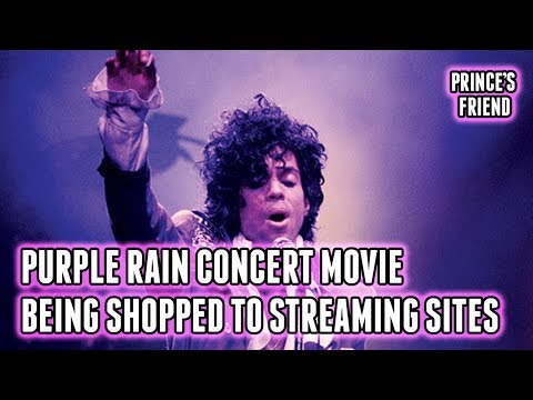 Purple Rain Concert Movie Being Shopped to Streaming Sites (Spotify, Apple Music)