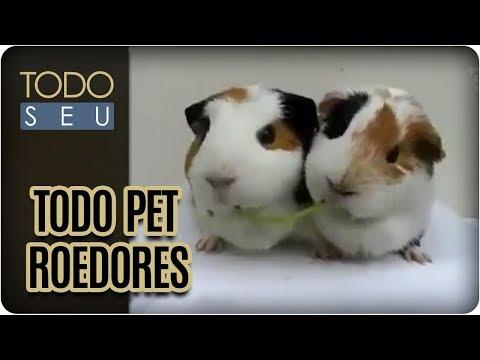 Todo Pet | Roedores - Todo Seu (28/09/17)