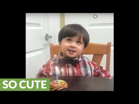 Cute little boy adorably fails to blow out birthday candle