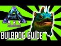 Bulbdog Guide for Ark: Aberration