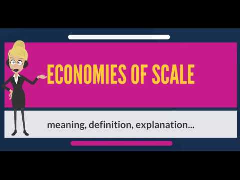 What are ECONOMIES OF SCALE? What do ECONOMIES OF SCALE mean? ECONOMIES OF SCALE meaning