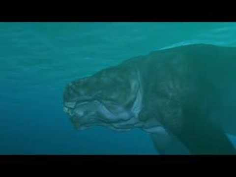 Devonian Sea 〜デボン紀の海〜