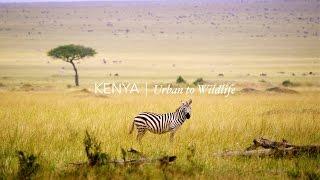 Kenya in 4k: Urban to Wildlife - Stock Footage