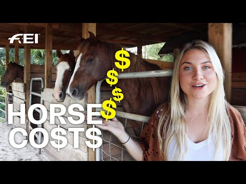 How Much Does It Cost To Have A Horse? Feat Stephanie Moratto | Guest Vlog
