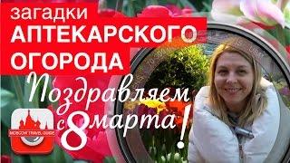 Загадки Аптекарского огорода. Старейший парк Москвы – Аптекарский огород.(, 2016-03-08T05:01:46.000Z)