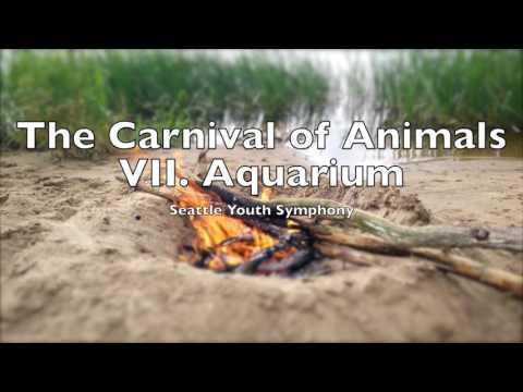 The Carnival of Animals VII Aquarium |  Camille Saint-Saëns 1 HOUR Loop Le carnaval des animaux