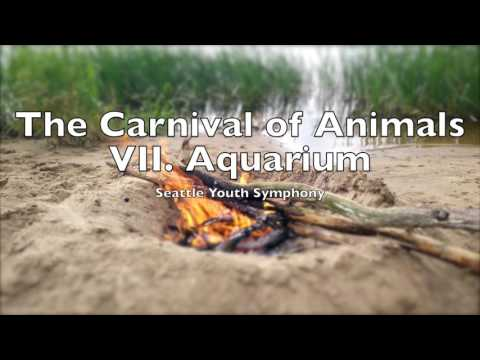 The Carnival of Animals VII Aquarium   Camille SaintSaëns 1 HOUR Loop Le carnaval des animaux
