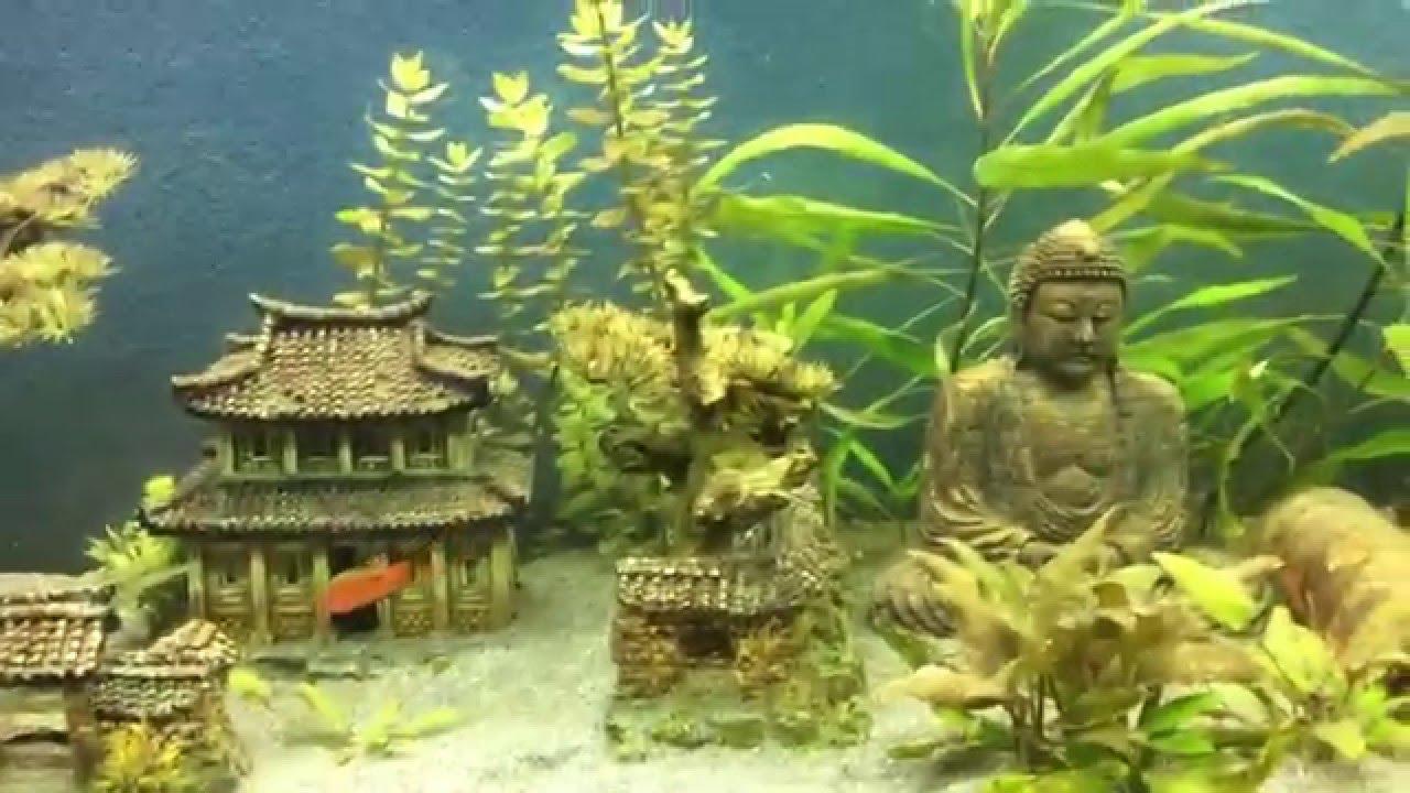Fishtank beautiful asian decoration youtube for Asian fish tank decorations