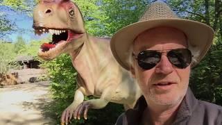 Fruehe Erdzeitalter - Evolution vs. Creation | 2017. Mai. 18.