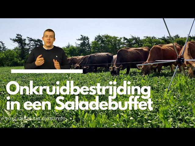 How to: Onkruidbestrijding in een Saladebuffet l Kruidenrijk Grasland