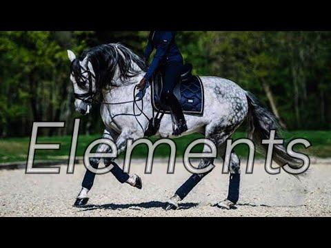 Elements || Dressage Music Video ||