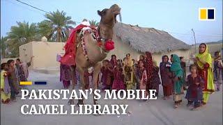 Camel delivers books to Pakistan's desert children amid Covid school closures