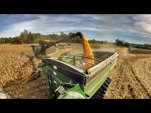 Harvest 2016 | Poynter Family Farms